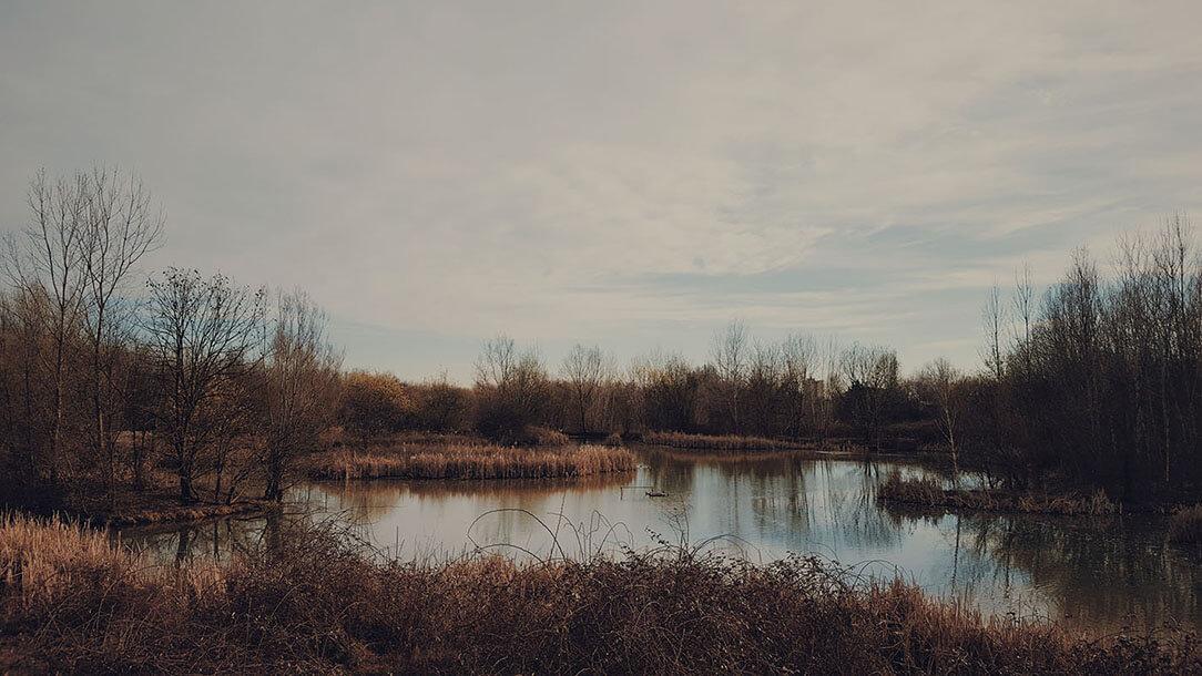 portfolio fotografico di Marianna Milione, paesaggio autunno