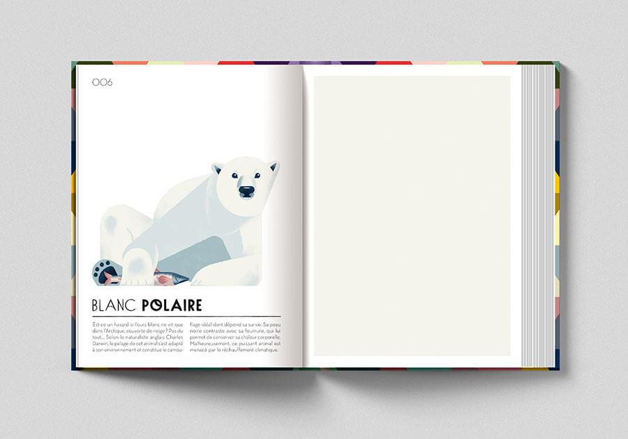 Colorama, libro sui colori. Pagina colore bianco polare