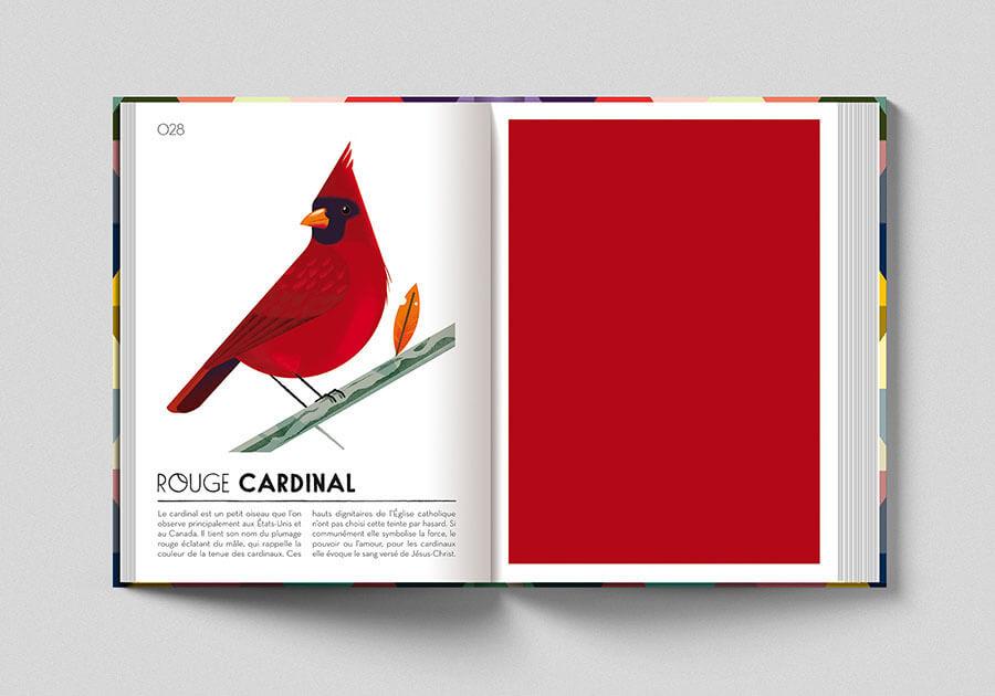 Colorama, libro sui colori. Pagina colore rosso cardinale