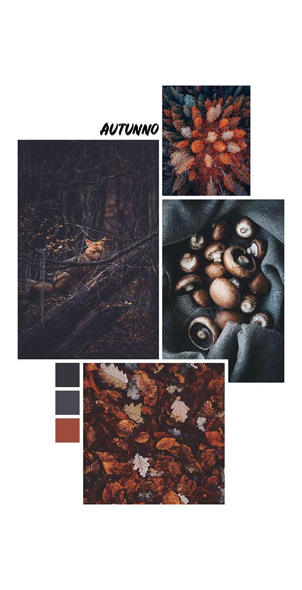 Moodboard del giorno: autunno. Palette colori: antracite, ardesia, terra bruciata. Dal blog di Marianna Milione
