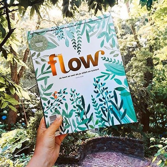 Regali di Natale illustrati: abbonamento a Flow Magazine Dal blog di Marianna Milione